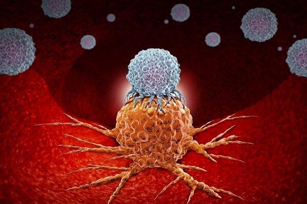 חידושים במלנומה וסרטן הכליה: המדריך המלא