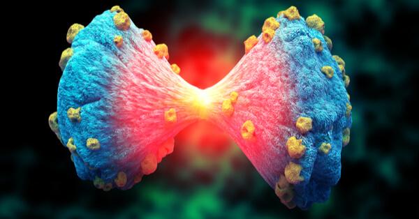 אימונותרפיה טיפול בסרטן