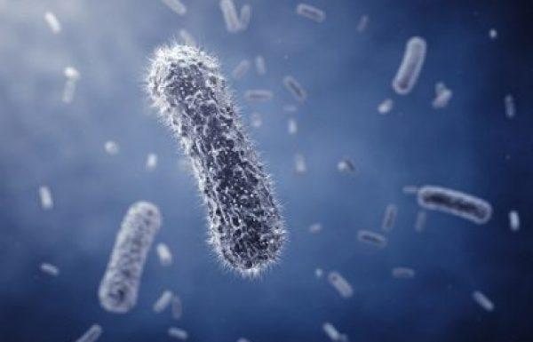 זיהום מסוג MRSA: המניעה וטיפול